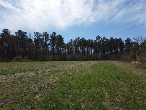 St, Pauls East : Saint Pauls : Robeson County : North Carolina