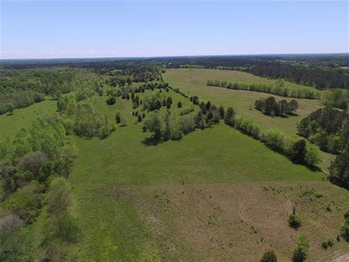 135 Acres in Fitzpatrick : Fitzpatrick : Bullock County : Alabama