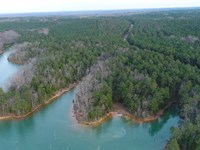Unrestricted, Wooded, Lake : Calhoun Falls : Abbeville County : South Carolina