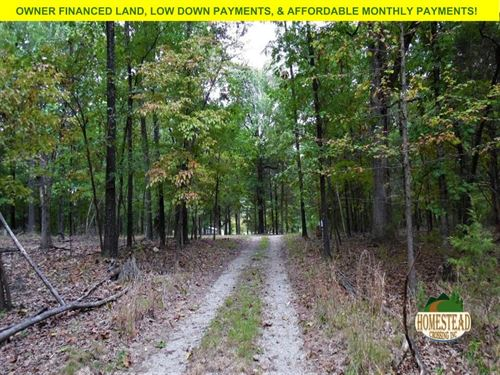 Wild Property Near Bull Shoals Lake : Mountain Home : Marion County : Arkansas