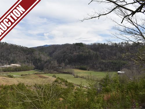 Auction, Lot 19 Jones Cove Rd : Cosby : Sevier County : Tennessee