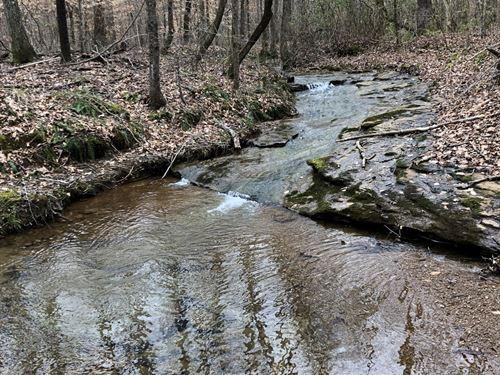 Coppers Rock Creek Tract : Woodland : Randolph County : Alabama
