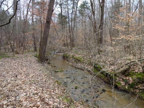 66.40 Acres, Recreational : Laurens : South Carolina