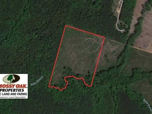 20.03 Acres of Hunting Land For Sa : Essex : Warren County : North Carolina