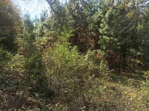 Holly Bush Development 112 : Brandon : Rankin County : Mississippi