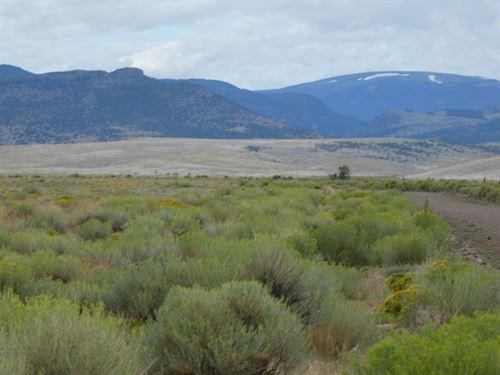 40 Acrs, Beautiful San Luis Valley : Eastdale : Conejos County : Colorado