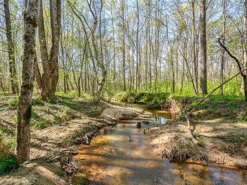 Madison Farms Lot E : Madison : Morgan County : Georgia