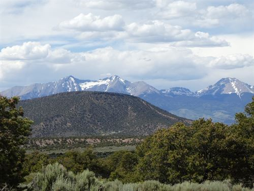 Priced To Sell, Beautiful 5 Acres : Fir : Costilla County : Colorado