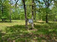 80 Acres Joining Norfork Lake : Mountain Home : Baxter County : Arkansas