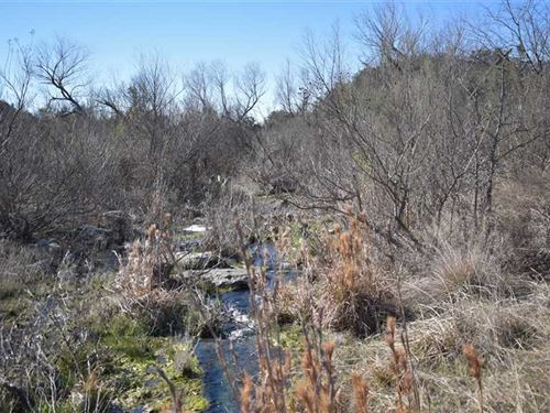 Land For Sale in Mills County, TX : Lometa : Mills County : Texas