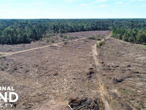 Town Creek : Pinetops : Edgecombe County : North Carolina