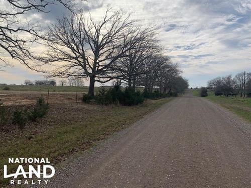 13 Acres Outside of Mabank, Pasture : Mabank : Kaufman County : Texas