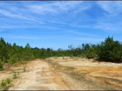 14.17 Acres In Hinds County In Byra : Byram : Hinds County : Mississippi