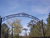 Mosquito Creek Ranch : Mount Pleasant : Gadsden County : Florida