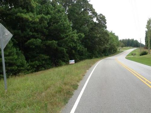 35 Acres Near I-20 : Heflin : Cleburne County : Alabama
