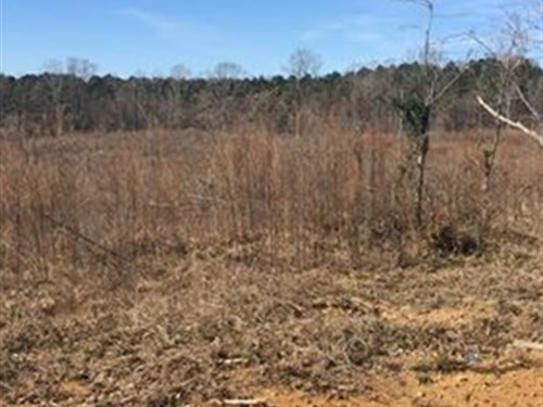 400 Acre Hunting Property : Hesterville : Attala County : Mississippi