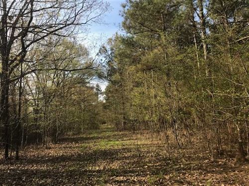 108 Acres of Fine Timber And : Epps : West Carroll Parish : Louisiana