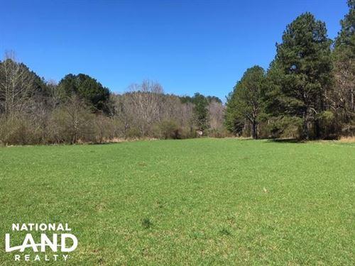Cahulga Creek Recreation & Timber : Heflin : Cleburne County : Alabama