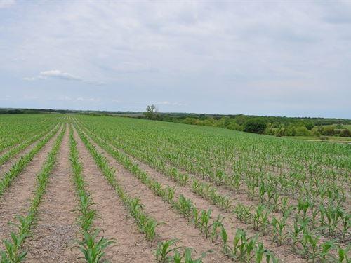 Gentry County Row Crop Farm : McFall : Gentry County : Missouri