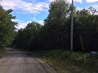 Wooded Recreational Land : Stratford : Fulton County : New York