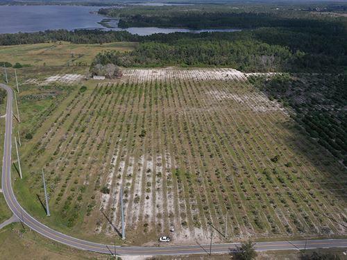 Johnson Ridge Development : Saint Cloud : Osceola County : Florida