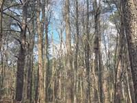 Weems Road : Locust Grove : Henry County : Georgia