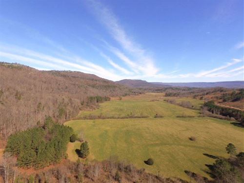 487 Acres Near Fox Mountain : Valley Head : DeKalb County : Alabama