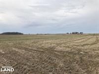 160 Acres Row Crop Farmland And : Des Arc : Prairie County : Arkansas