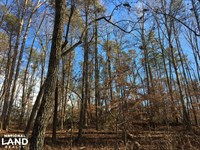 Travelers Rest Hardwoods And Creeks : Greenville : Greenville County : South Carolina