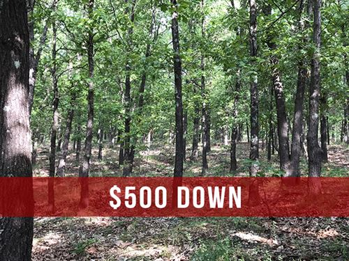 Seller Financed Acreage Near River : Lebanon : Dallas County : Missouri