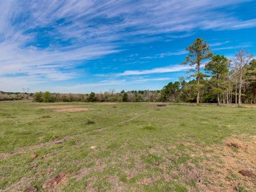 Bates Ranch : Montgomery : Texas