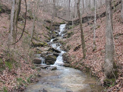 10+ Acres In Rockcastle Development : Jamestown : Fentress County : Tennessee
