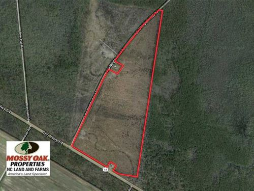 Under Contract, 74.4 Acres of Hu : Manns Harbor : Dare County : North Carolina