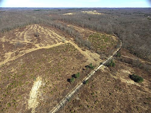 North Shurtz Rd, 62 Acres : New Plymouth : Vinton County : Ohio