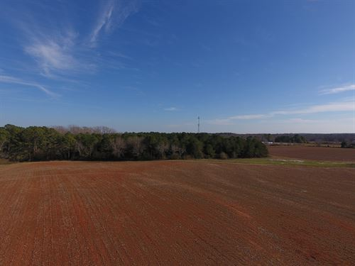 Potential Industrial Tract : Mansfield : Newton County : Georgia