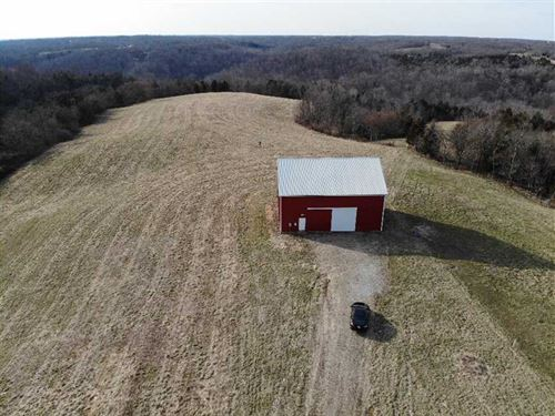42.5 Acre Deer And Turkey Paradise : Vevay : Switzerland County : Indiana
