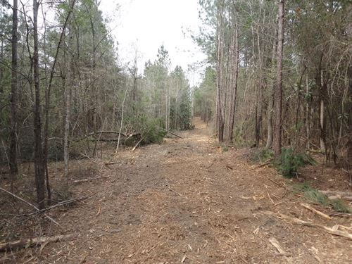 10 Acres Lincoln County Brookhaven : Brookhaven : Lincoln County : Mississippi