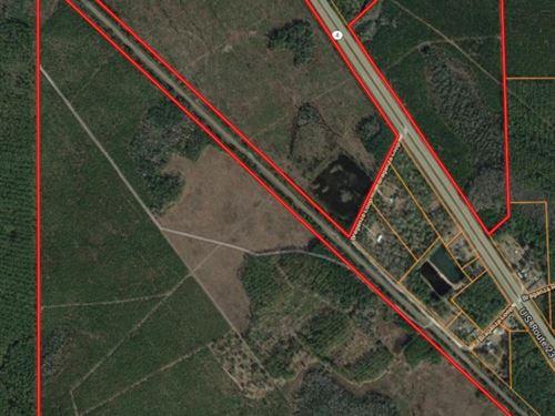 395 Acres Recreational Property : Waycross : Ware County : Georgia