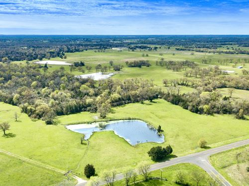 77 Acre Recreational Ranch : Madisonville : Madison County : Texas