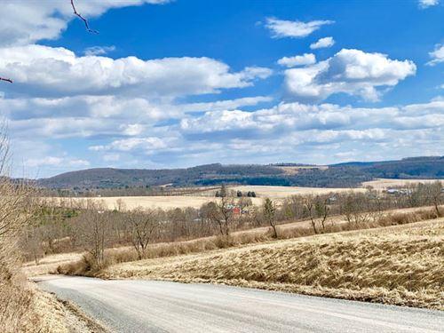 45 Acres Land With Nice Views : Orangeville : Columbia County : Pennsylvania