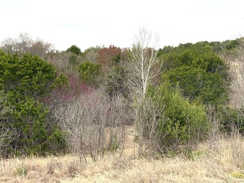 5+ Scenic Acres, Great Home Sites : Bluff Dale : Erath County : Texas