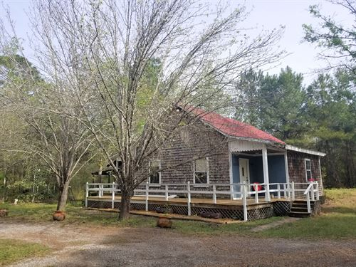 Country Home, Raw Virgin Timber, 20 : Lake Butler : Union County : Florida