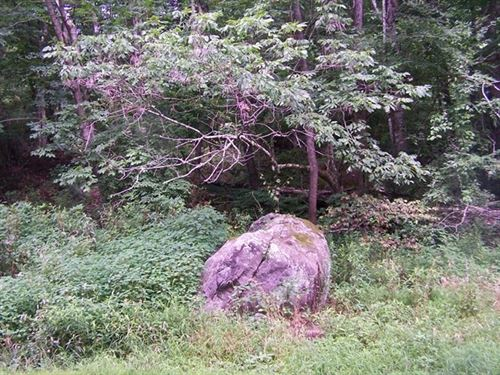 Secluded, Wooded Tract Blue Ridge : Troutdale : Grayson County : Virginia
