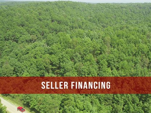 $500 Down 5 Acres On Public Land : Birch Tree : Shannon County : Missouri