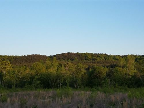 Ligon Creek Mtn Retreat, 160+ Ac : Delta Al : Clay County : Alabama