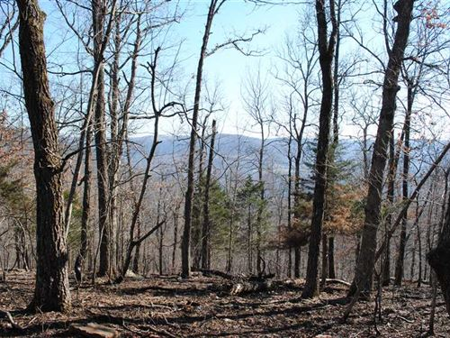 455.14 Acres of Mountaintop Land : Parthenon : Newton County : Arkansas