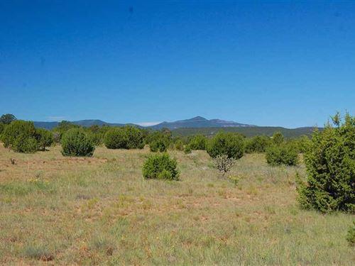 Double L Ranch : Estancia : Torrance County : New Mexico