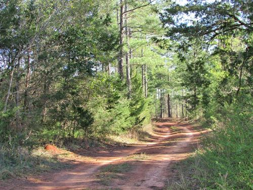 Stewart Co, Ga Hunting Investment : Lumpkin : Stewart County : Georgia