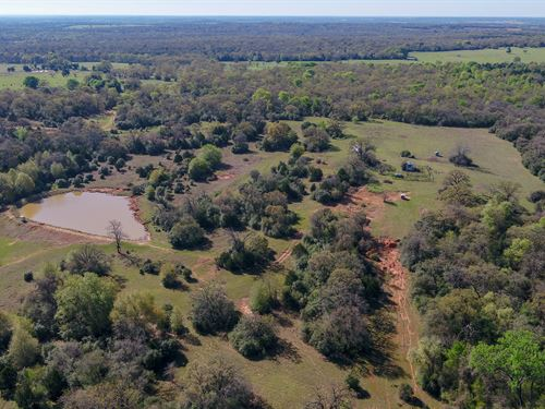Secluded 143.98 Acres : Lexington : Lee County : Texas