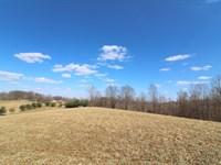 Norwalk Rd, 20 Acres : Kimbolton : Guernsey County : Ohio